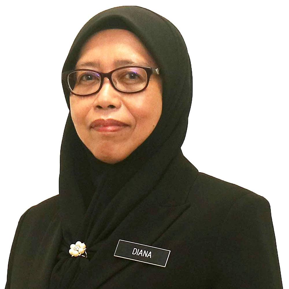 Diana Daria Amit